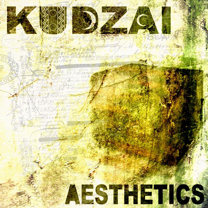 Aesthetics NEW Promo Cover